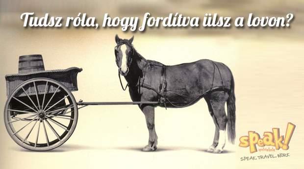 angol-nyelviskola-horse