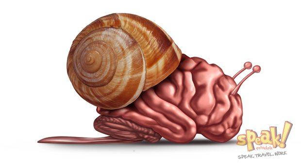 angol-tanulas-brain