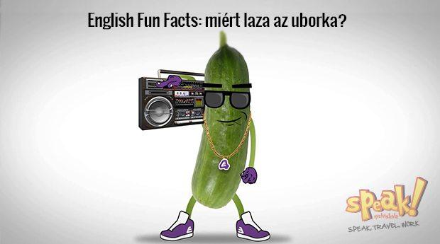 English Fun Facts: miért laza az uborka?
