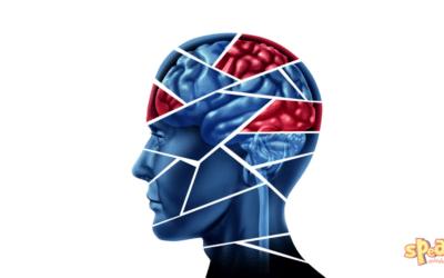 Állítsd az elméd a nyelvtanulásod szolgálatába