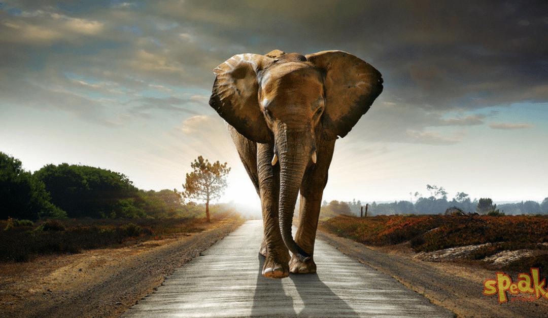 Tanmese a leláncolt elefántról