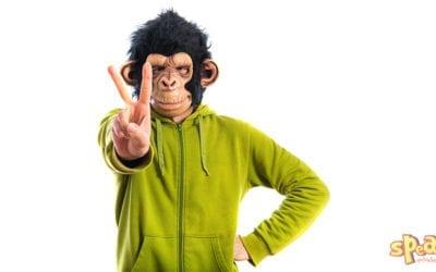 Újabb állati jó angol kifejezések, amiket érdemes megtanulnod (2. rész)
